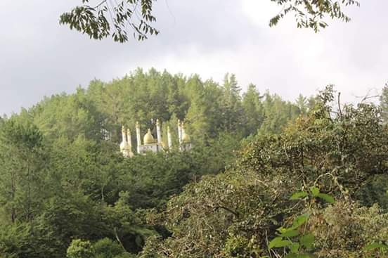 masjid di tengah hutan